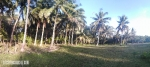 700 sqm Siargao LOT near the Beach For Sale