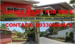 House and Lot For Sale Brgy. Luna Surigao City